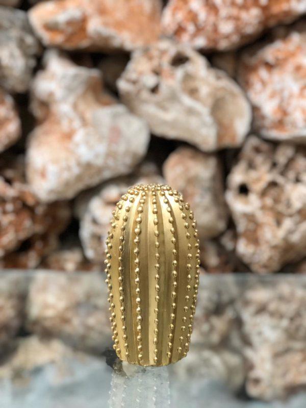 קקטוס דקורטיבי עגול זהב